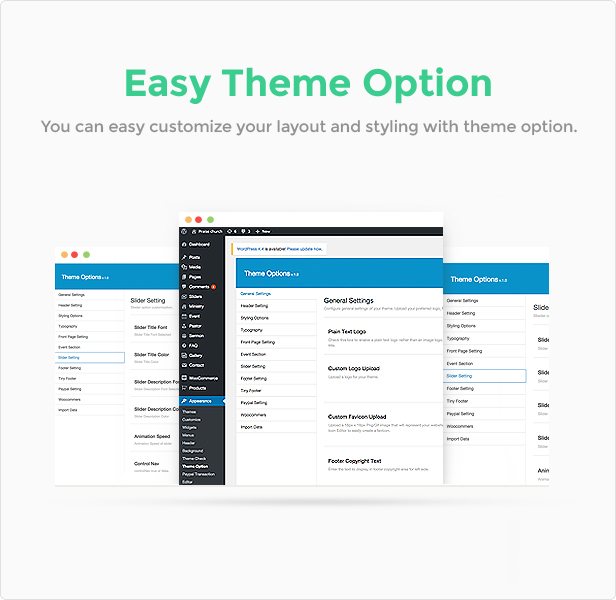 Theme options features